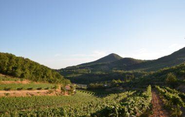 vignale-di-cecilia-vulkan